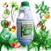 สารอินทรีย์สกัดขยายเซลพืช ฮอร์โมนทางใบสำหรับพืช