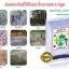 จุลินทรีย์ดิน โรงงานผลิตธาตุอาหารในดิน thumbnail 4