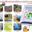 จุลินทรีย์ดิน โรงงานผลิตธาตุอาหารในดิน thumbnail 6
